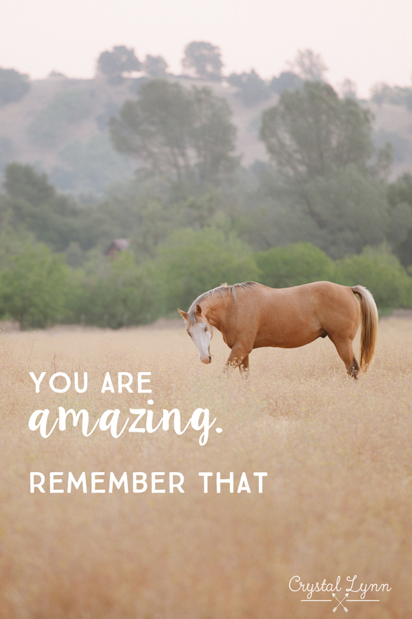 You are amazing. Remember That | Crystal Lynn Photography | www.crystallynncollins.com