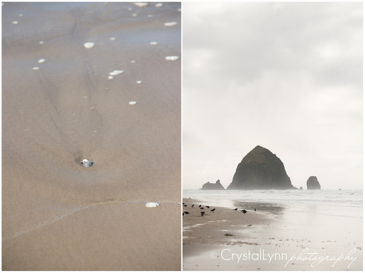 Cannon Beach, Oregon | Crystal Lynn Collins